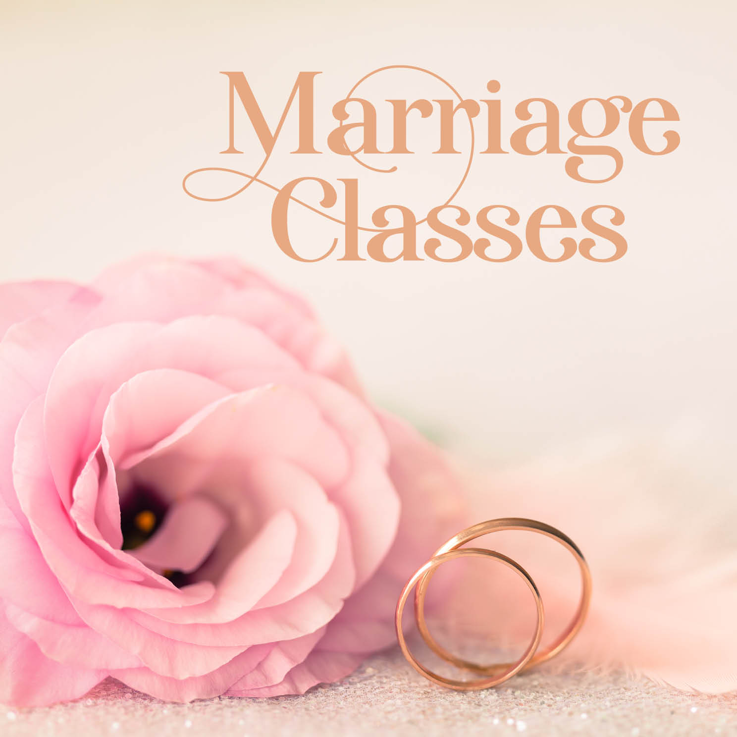 Marriage Classes / Shovavim Shiur